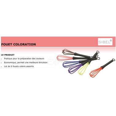 Fiche fouet pour preparer les couleurs cheveux professionnelles marque sibel